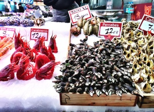 An amazing array of seafood.