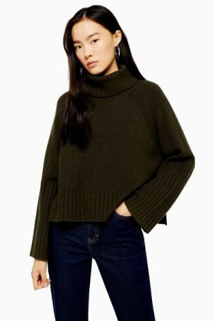https://www.topshop.com/en/tsuk/product/clothing-427/jumpers-cardigans-6924635/khaki-knitted-super-soft-crop-roll-neck-jumper-9276541